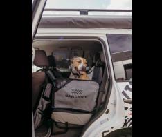 Dog Seat Buddy